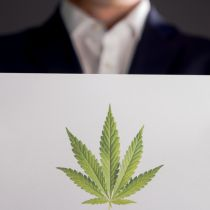 Marijuana In The Workplace: Write Your Policy Live With An Employment Lawyer